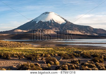 Parinacota Volcano Reflected In Lake Chungara, Chile