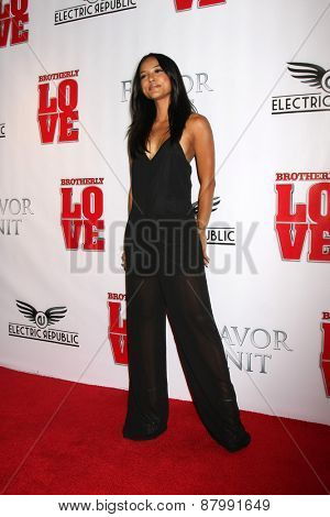 LOS ANGELES - FEB 13:  Karrueche Tran at the