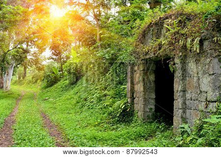 Stone Crypt In Botanical Garden Georgia Batumi