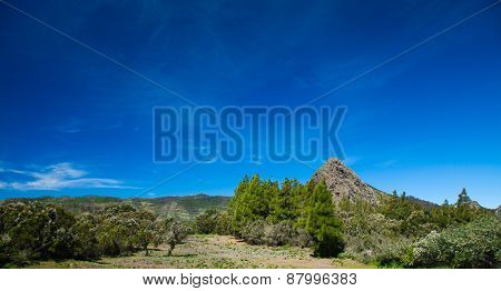 Inland La Gomera