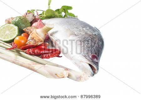 Snapper and spices