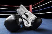 foto of boxing ring  - Pair of black boxing gloves inside ring - JPG
