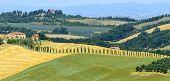 stock photo of senesi  - Crete senesi characteristic landscape in province of Siena  - JPG