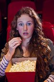 stock photo of cinema auditorium  - Surprised young woman watching a film at the cinema - JPG