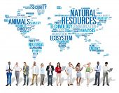 pic of environmental conservation  - Natural Resources Environmental Conservation Sustainability Concept - JPG