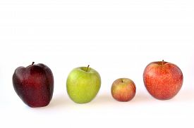 picture of respect  - Four different apples  - JPG