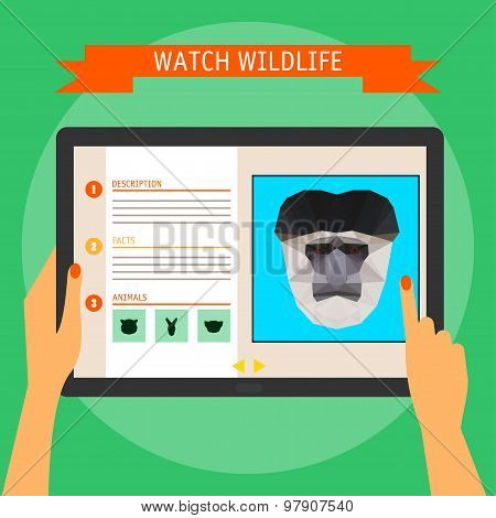 Digital Tablet With Colobus Monkey Portrait And Website About Wildlife.