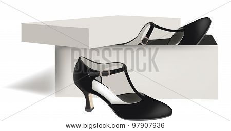 female dance shoes