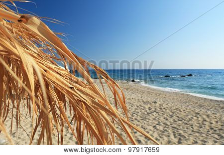 parasol made of palm leaves on the beach
