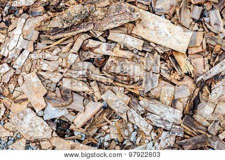 scraps of wood texture,bark wood,texture background