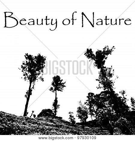 Beauty Of Nature With Landscape Scenery With Trees And Hills Eps10