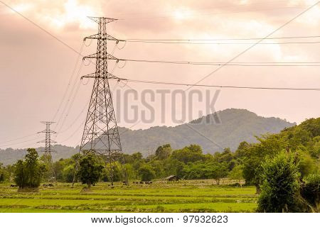 The Electric Post On Grassland.