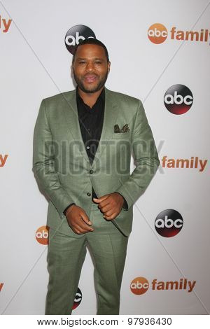 LOS ANGELES - AUG 4:  Anthony Anderson at the ABC TCA Summer Press Tour 2015 Party at the Beverly Hilton Hotel on August 4, 2015 in Beverly Hills, CA