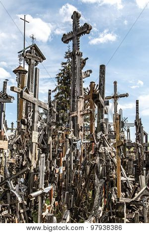 Hill Of Crosses With Wooden Crosses