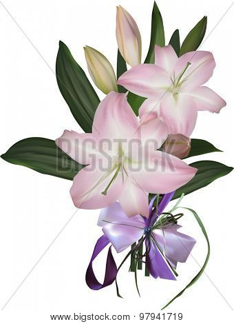illustration with pink lily isolated on white background