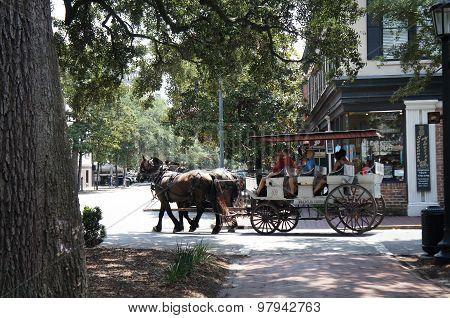 Savannah Georgia Horse Carriage Rides