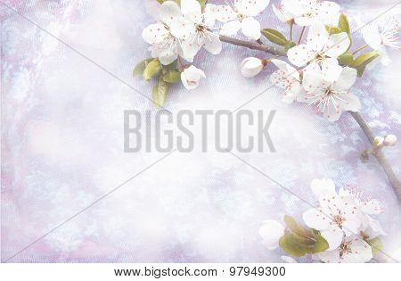 Light Background With Blossoming Tree Brunch.