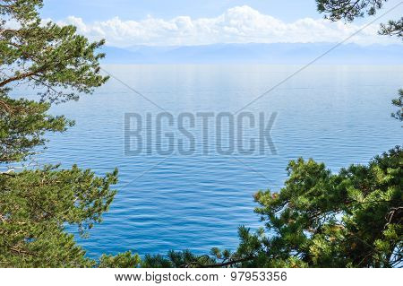 Baikal Lake Through The Trees