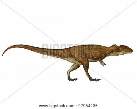 Carcharodontosaurus Side Profile