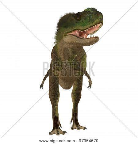 Rugops Carnivore Dinosaur