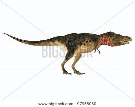 Tarbosaurus Side Profile