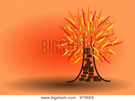 Single Flaming Tree Or Burning Tree
