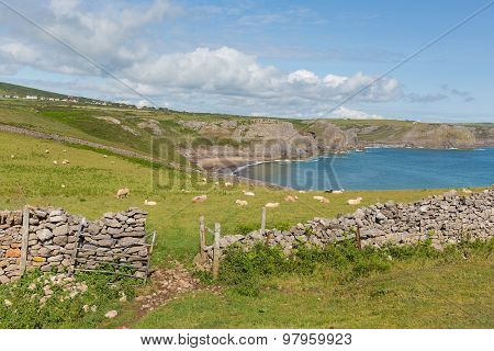 Fall Bay The Gower peninsula South Wales UK near to Rhossili beach and Mewslade Wales coast path