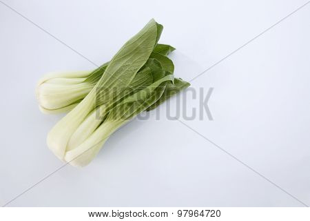 Bok choy isolated on white