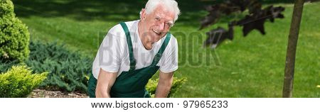 Happy Elderly Gardener Working