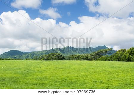 A wide expanse of green pastures and a vibrant sky in the highlands of Hawaii