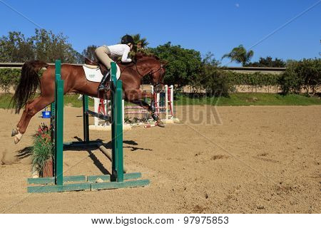 Young girl in horse jumping demonstration and equine event