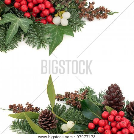 Christmas and winter background border with holly, mistletoe ivy, spruce fir, pine cones and cedar cypress over white background.