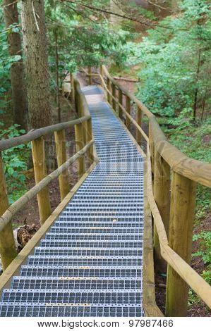Winding Stairway In Summer Forest