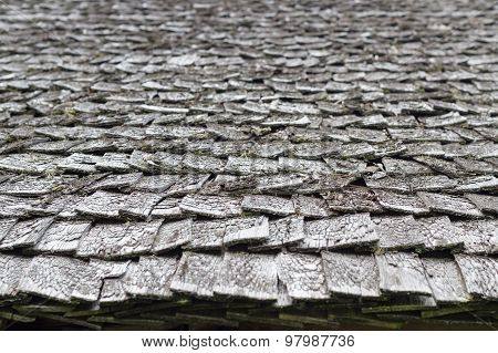 Old And Weathered Wooden Roof Shingle, Blurred Texture And Background