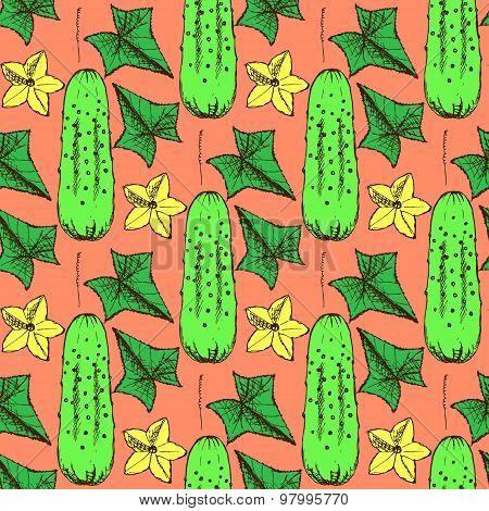 Sketch Cucumbers  In Vintage Style