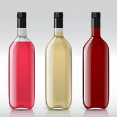 Постер, плакат: Set of transparent bottles for different wines