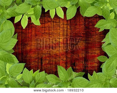 Old wooden background with floral frame