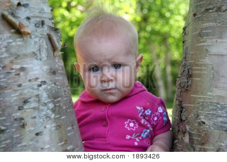Baby Girl Posing In A Tree