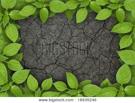 cracked soil with green plant frame