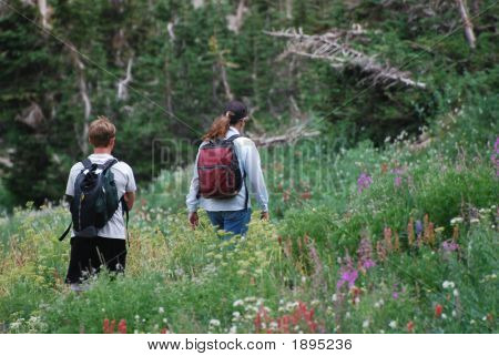Hiking In Meadow