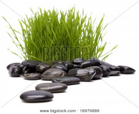 grass and stones isolated on white background. focus on stones.