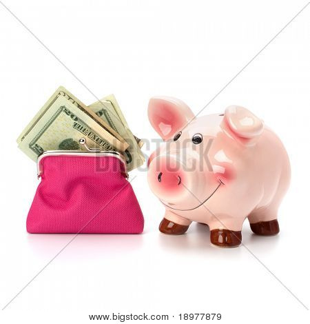 Money accumulation concept. Money and piggy bank isolated on white background.