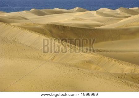 Sand Duns