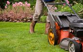 stock photo of grass-cutter  - Gardener mowing the lawn - JPG