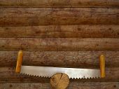 two-handled saw on log wall background