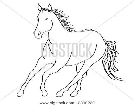 Calligraphic Running Horse
