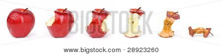 Rotten apple in process according to time line