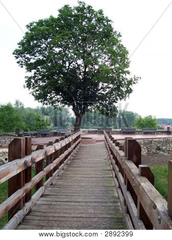 Sarospatak, Bridge Of The Rakoczi Castle