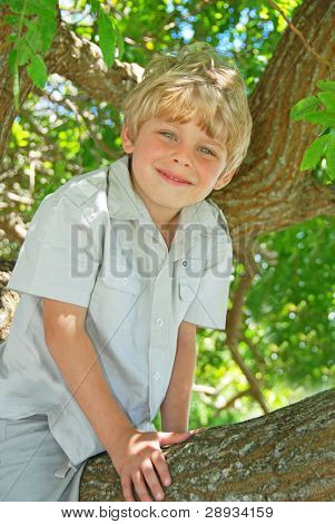 Smiling young boy sitting in a tree