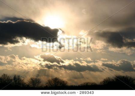 Wintry Sky